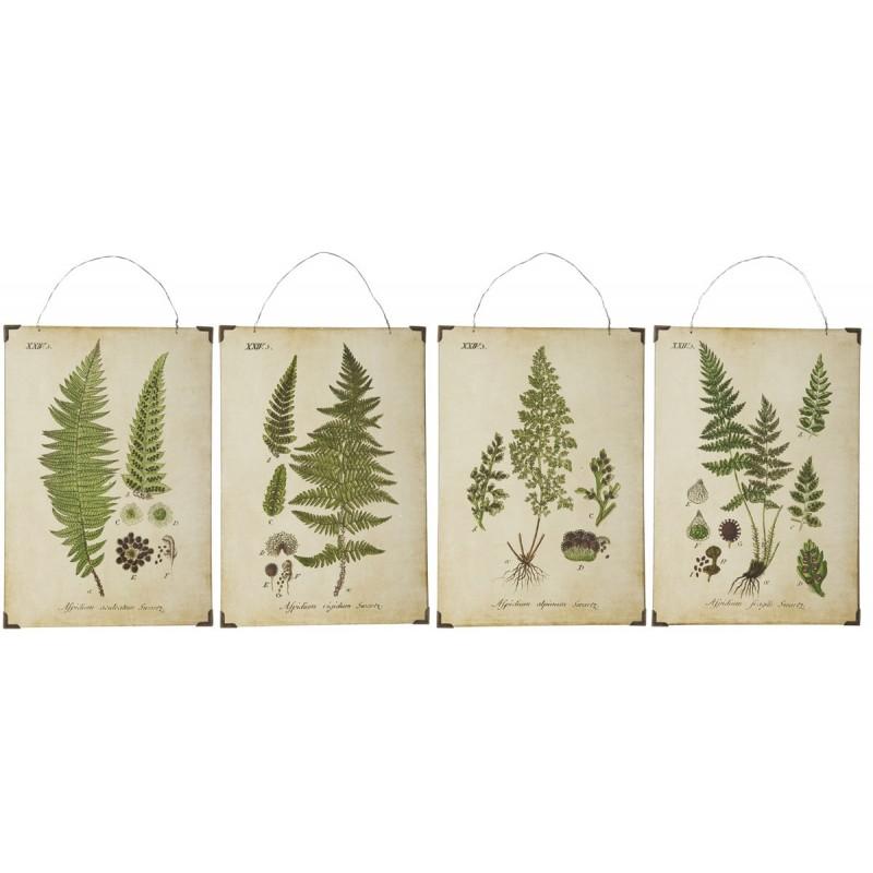 Planche lille - ib laursen m/ bregneblade grøn - 4 forskellige